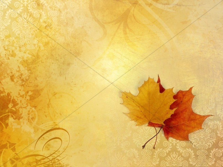 Leaves on Lace Fall Worship Background