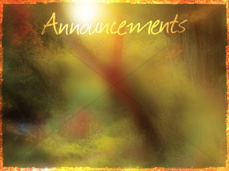 Muted Forest Announcement Background Slide