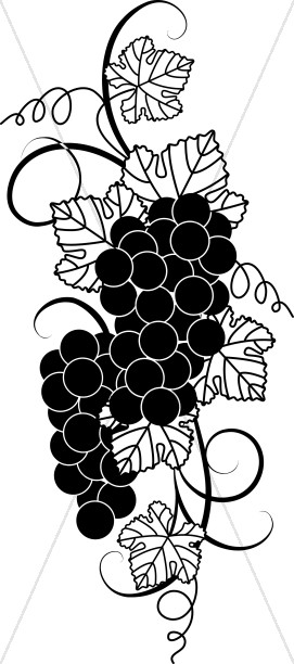 Black And White Grape Clipart