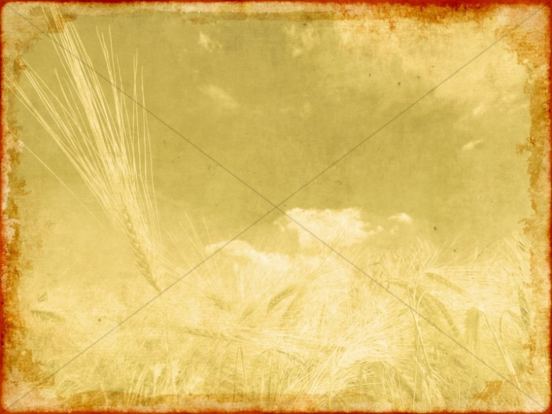 Worship Background For Harvest