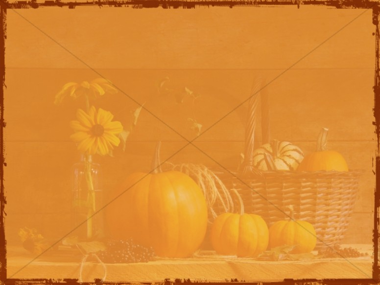 Pumpkin Harvest Background Image
