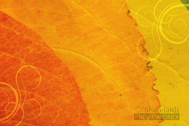 Autumn Worship Video Background