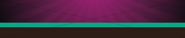 Purple with Stripe Email Footer