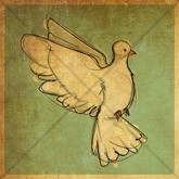 Dove of Pentecost Email Image
