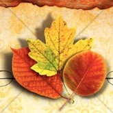 Three Autumn Leaves Email Image