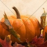 Fall Harvest Pumpkin Email Image