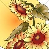 Sunny Sunflowers Email Image