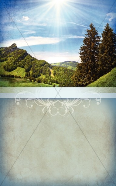 Landscape Bulletin Cover