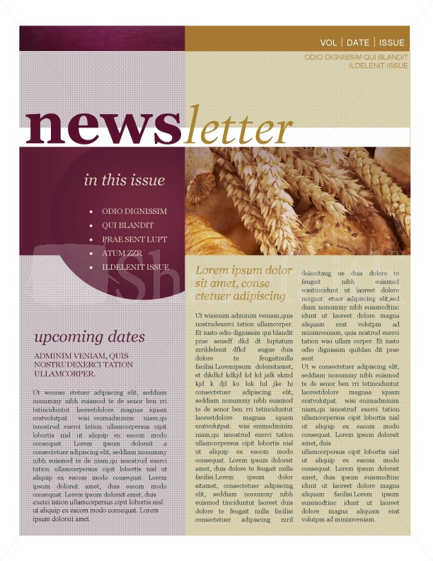 Fall Newsletter Template Template  Newsletter Templates