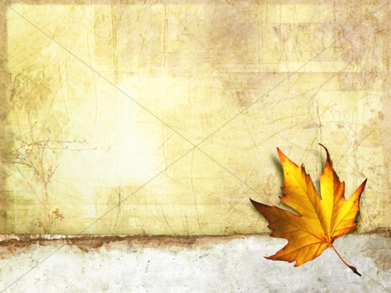 Fall Leaf Worship Background