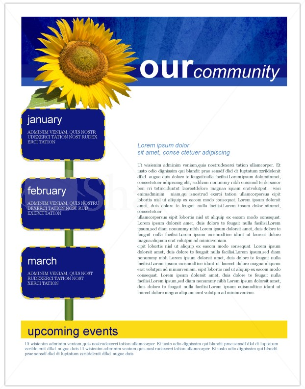 Sunflowers Church Newsletter