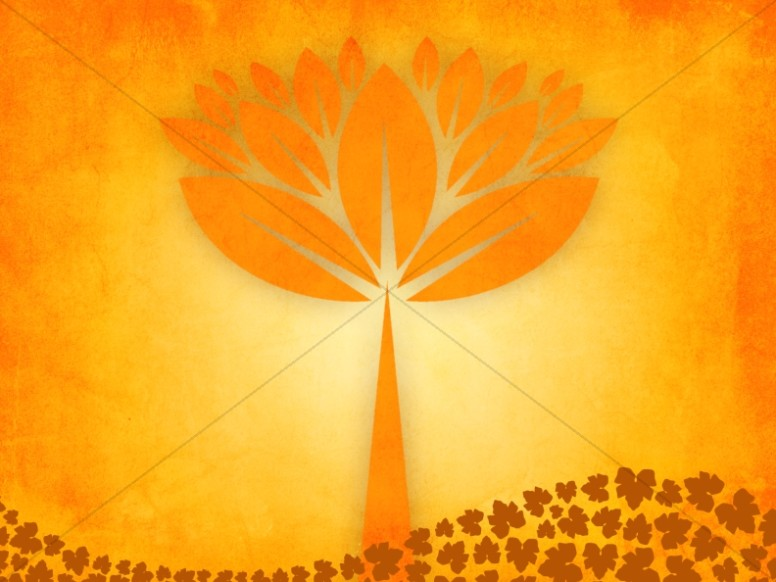 Fall Trees Worship Background