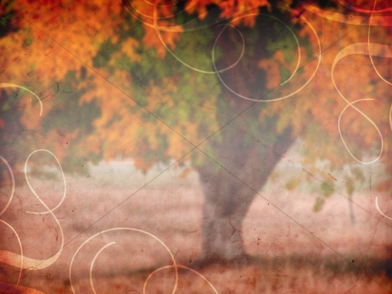 Fall Decor Worship Background