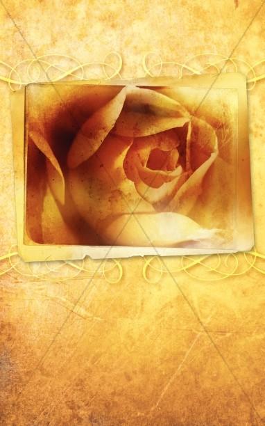 Rose Church Bulletin Cover