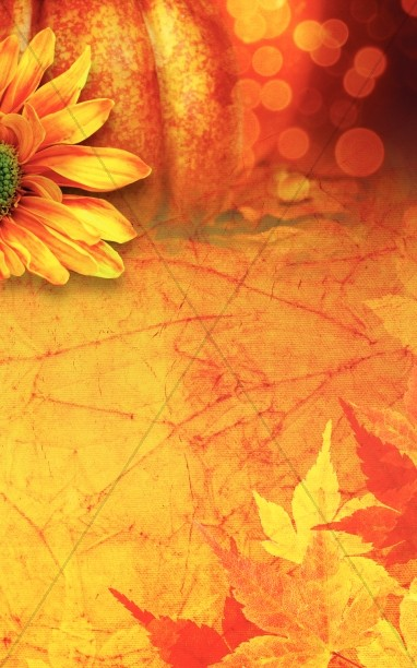 Thanksgiving Flower Bulletin Cover