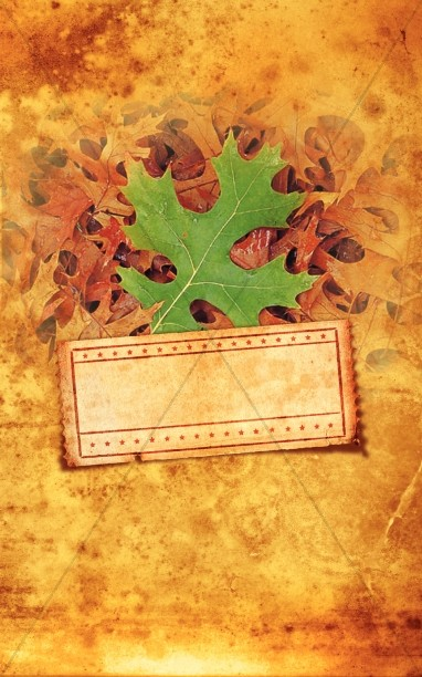 Fall Leaf Pile Bulletin Cover