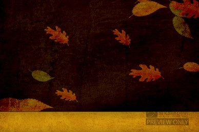 Falling Leaves Worship Video Loop