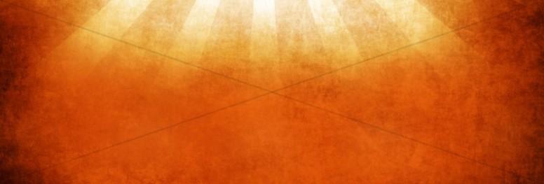 Rays Website Banner