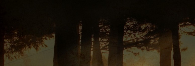 Trees Website Banner