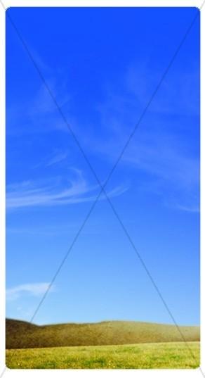 Field Banner Widget