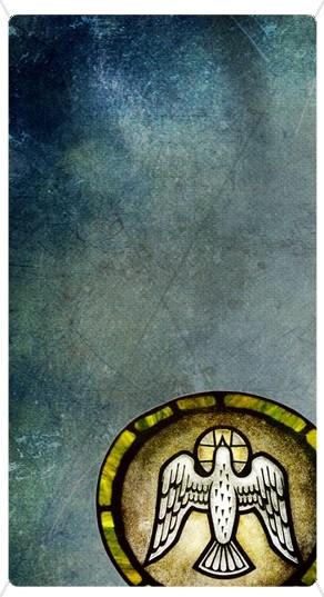 Dove Banner Widget