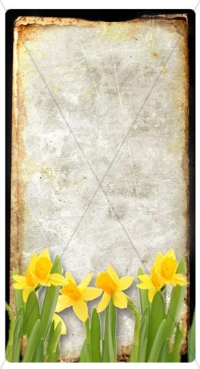 Spring Flowers Banner Widget