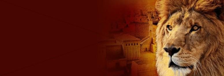 Jerusalem Lion Website Banner
