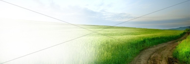 Green Field Website Banner