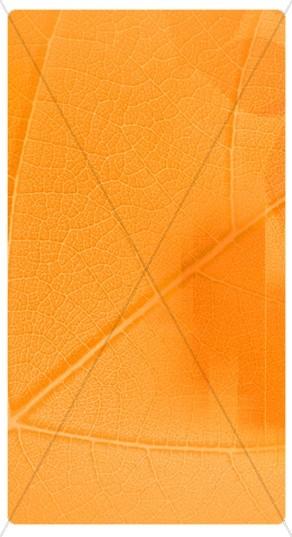 Orange Texture Banner Widget