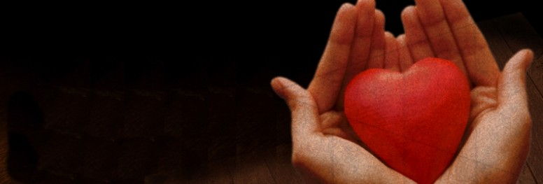 Heart and Hands Website Banner