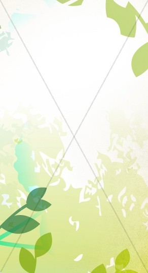 Spring Light Banner Widget
