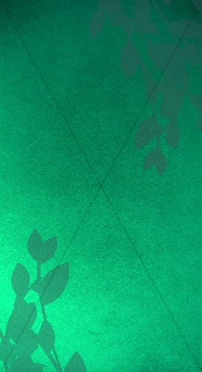 Green Website Sidebar