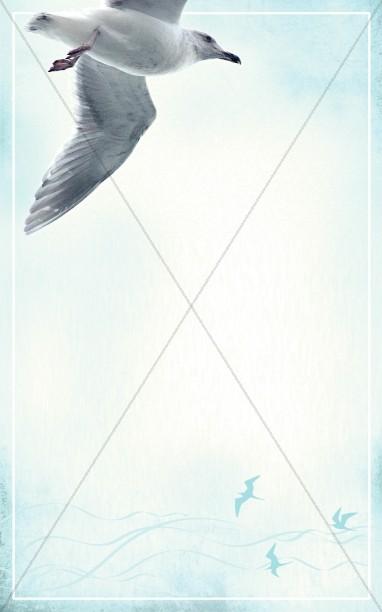 Seagull Bulletin