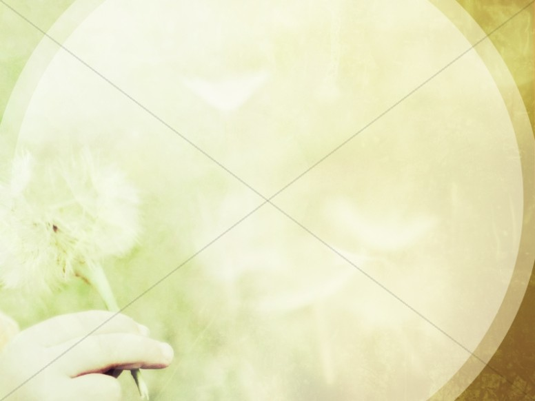 Dandelion Worship Background