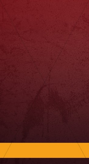 Maroon and Gold Website Sidebar
