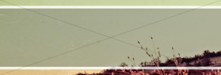 Scenic Field Website Banner