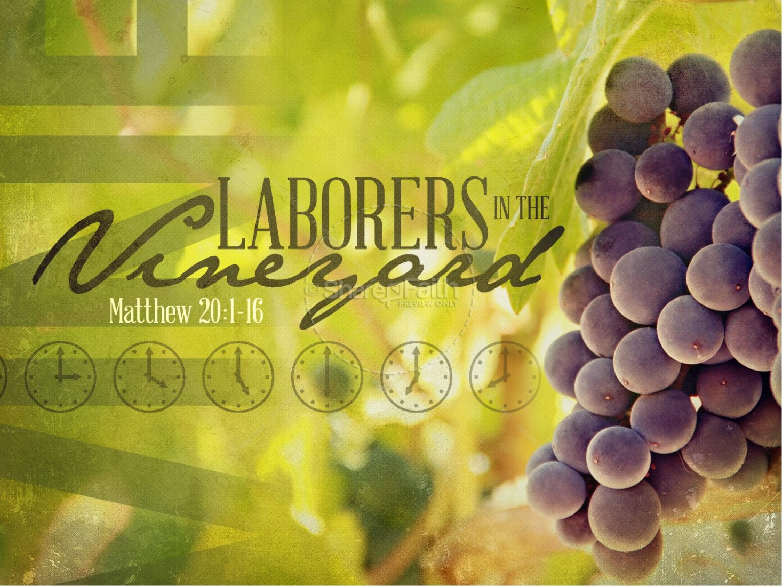 Image result for laborers in the vineyard parable