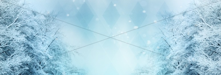 Winter Website Banner