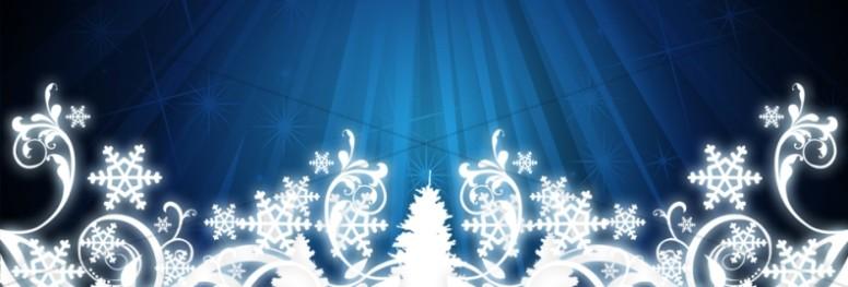 Snowflake Scrollwork Website Banner