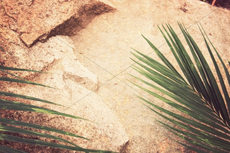 Palm Sunday Christian Stock Photo
