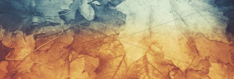 Fall Leaves Watermark Banner