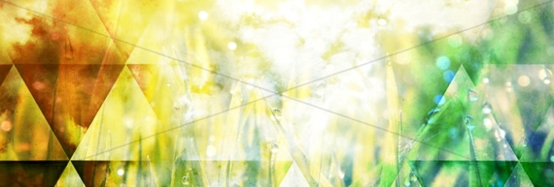 Shapes and Grass Website Banner