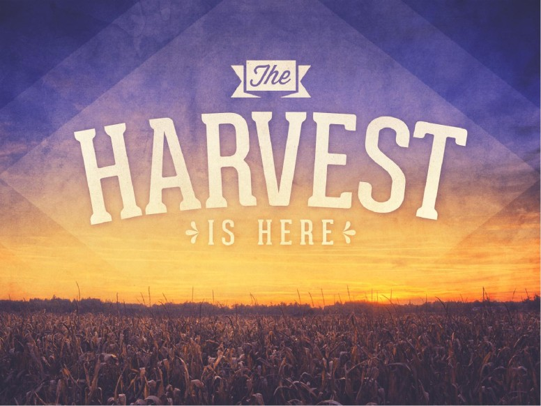 Harvest PowerPoint Sermon Slides