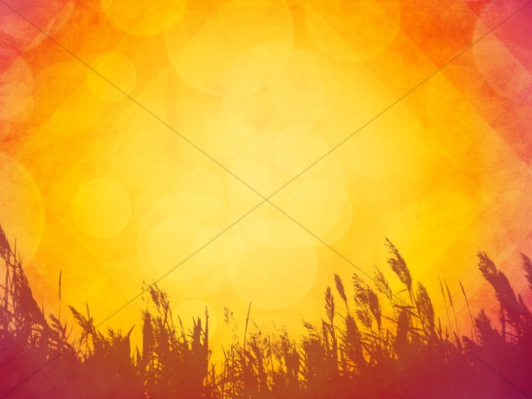 Fiery Autumn Fields Religious Background