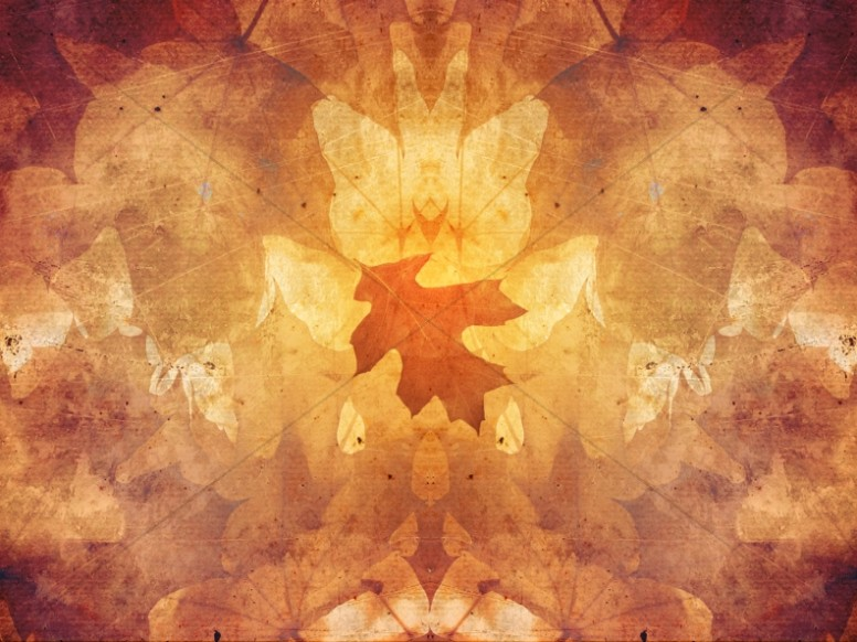 Autumn Symmetry Skewed Leaf Ministry Background