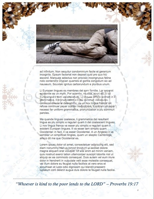 Light of the World Christmas Newsletter | page 2