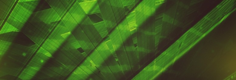 Palm Sunday Ministry Website Banner
