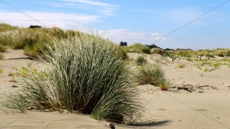 Sandy Landscape Ministry Stock Photo