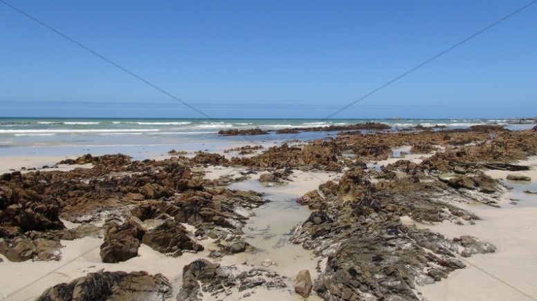 Seaweed Beach Landscape Ministry Stock Photo