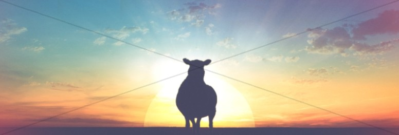 The Lost Sheep Christian Website Banner